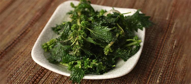 How to Cook Spring Nettles