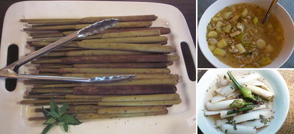 """Delicious Recipes Using Cattails – """"The Supermarket of the Swamp"""""""