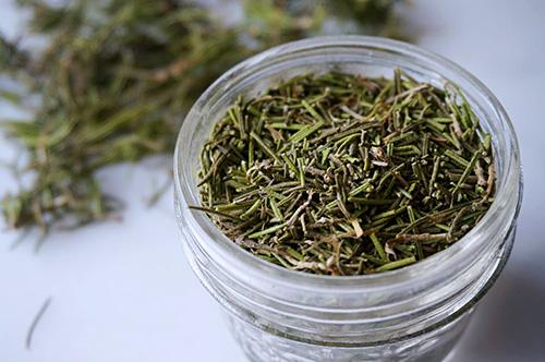 Best Mind Care Remedies for Seniors - Rosemary