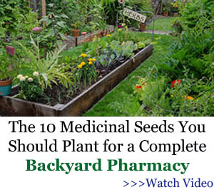 The 10 Medicinal Seeds You Should Plant for a Complete Backyard Pharmacy