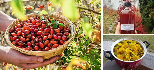 10 Natural Remedies You Can Only Make This Fall