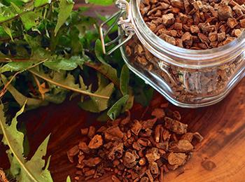 10 Natural Remedies You Can Only Make This Fall Dandelion Root