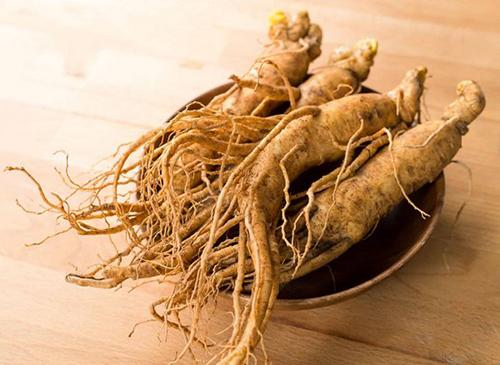 3 Fat Burning Plants You Aren't Eating Right Now Ginseng Root