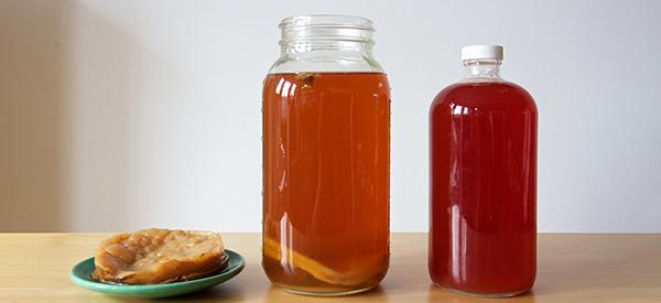 How to Make Medicinal Kombucha at Home