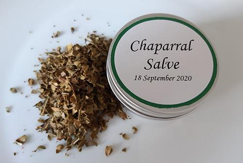 How to Make a Chapparal Salve for Wounds and Skin Infections - Chapparal Salve
