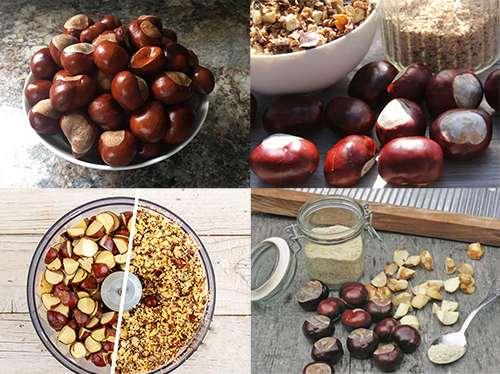 How to Treat Varicose Veins with Chestnuts - Preparation