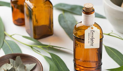 The complete list of essential oil substitutes- Eucalyptus
