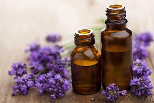 The complete list of essential oil substitutes- Lavender