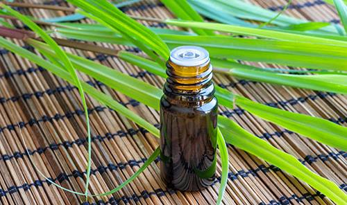 The complete list of essential oil substitutes- Lemongrass