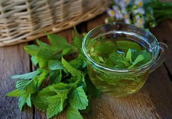 46 Best Teas for Every Ailment - Lemon Balm