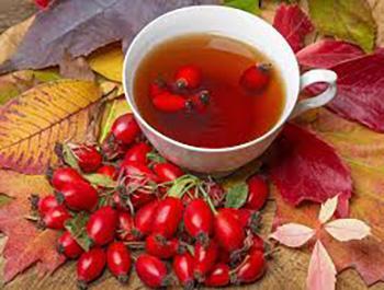 46 Best Teas for Every Ailment - Rosehip
