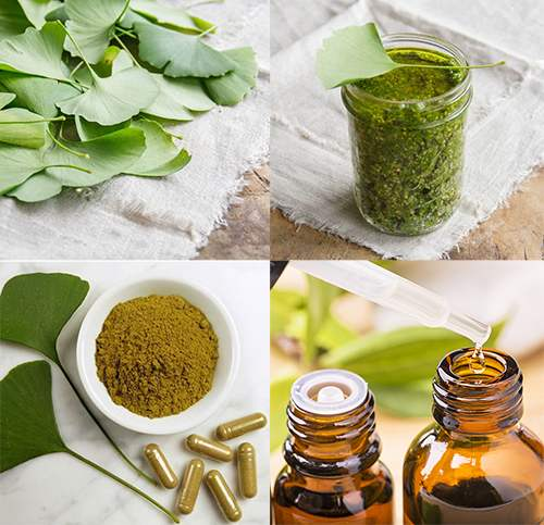 5 Natural Remedies to Treat Vertigo - Gingko Biloba Tincture