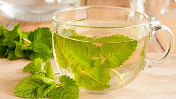 5 Natural Remedies to Treat Vertigo - Lemon Balm Tea