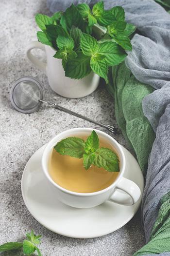 5 Winter Herbs to Cut Belly Fat - Mint