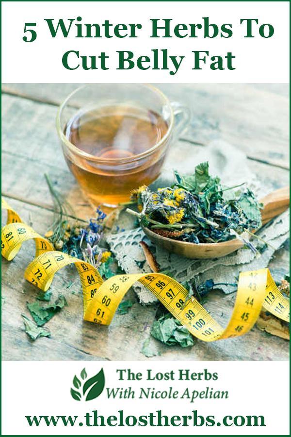 5 Winter Herbs to Cut Belly Fat - Pinterest