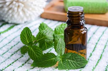 8 Best Essential Oils for Weight Loss - peppermint