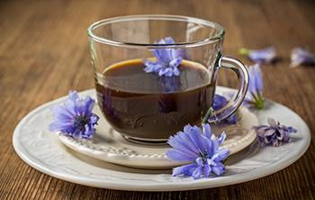 Herbal Coffee Substitutes You Can Drink Every Morning - Chicory