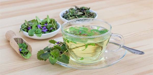 Vervain The Medicinal Plant that Should be Part of Your Apothecary - tea