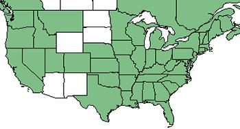 Peppermint - US Map