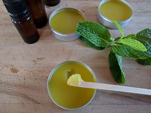 How to Make a Pain Healing Mint Salve