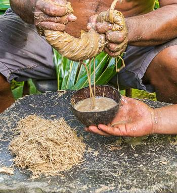 Kava The Most Powerful Herb To Reduce Stress - Kavalactones