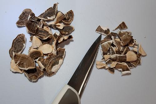 Turkey Tail Mushroom Recipe - 1