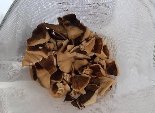 Turkey Tail Mushroom Recipe - 3