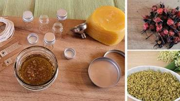 DIY Elderflower And Rosehip Salve