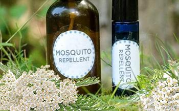 50 Ways to Use Yarrow - Insect Repellent