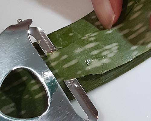 Aloe Vera - Peel off outer layer