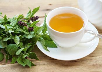 Basil, How to Grow More Than You Can Eat - Basil Tea