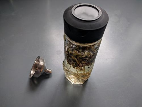 Cramp Bark Tincture for Muscle Aches, Cramps & Spasms - Step 7.2