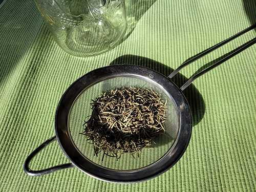 DIY Brain Boosting Tonic with Rosemary - Step 1