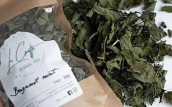 Healing Herbs You Can Smoke - Bergamot
