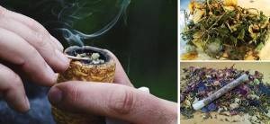 Healing Herbs You Can Smoke - Cover