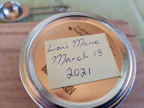 Homemade Lion's Mane Tincture for Brain Fog - Step1.6