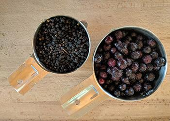 How To Infuse Honey with Elderberry - dry vs fresh