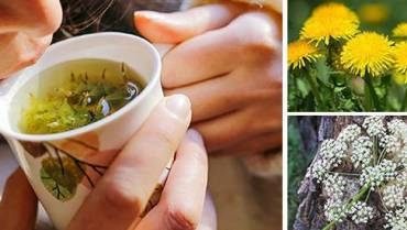 10 Herbs That Kill Viruses and Clear Lungs