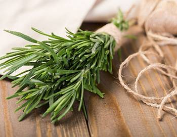 10 Herbs That Kill Viruses and Clear Lungs - Rosemary