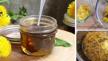 Dandelion Syrup For Cholesterol and Blood Sugar Control