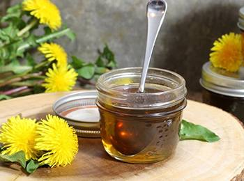 Dandelion Syrup For Cholesterol and Blood Sugar Control - The recipe