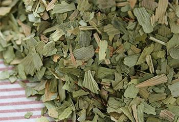 Drying Ginkgo Biloba