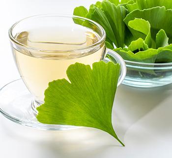 Gingko Biloba Recipe - Tea