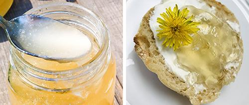 How to Make a Dandelion Jelly - Recipes