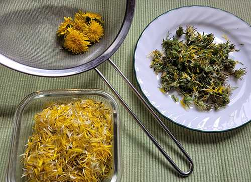 How to Make a Dandelion Jelly - Step 3
