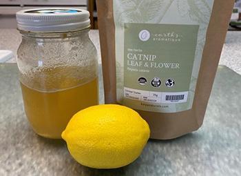 Catnip - Ingredients