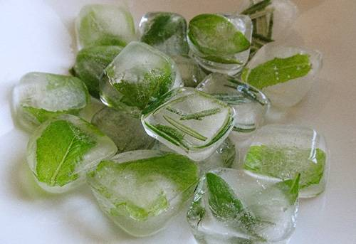 How to Make Herbal Ice Cubes Final
