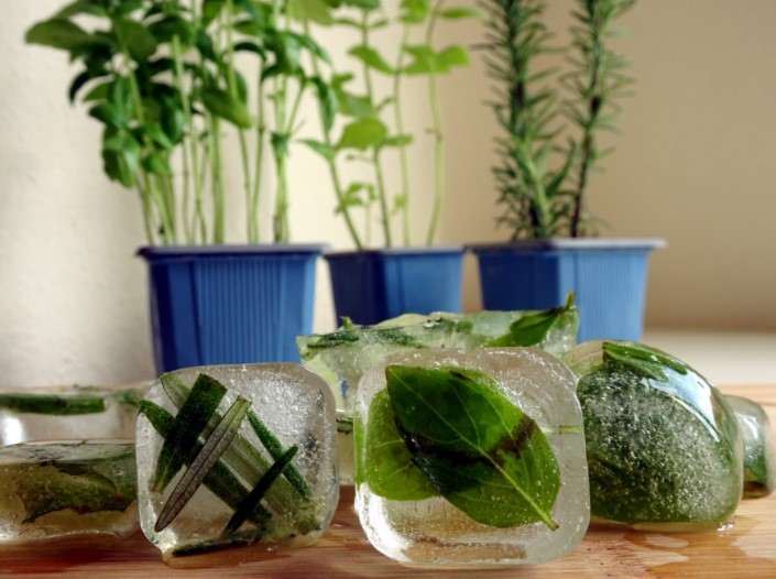 How to Make Herbal Ice Cubes Health Benefits