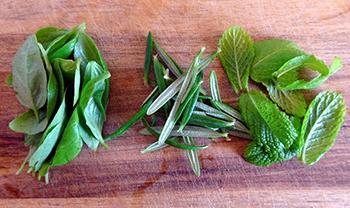 How to Make Herbal Ice Cubes - Ingredients