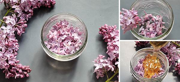 Lilac Flower Infused Honey